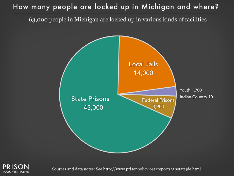 Pie chart showing that 58,000 Michigan residents are locked up in federal prisons, state prisons, local jails and other types of facilities