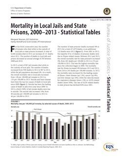 BJS mortality 2000-2013 report thumbnail