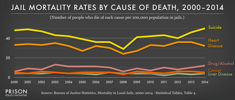This graph shows that suicide has been the leading cause of death in jails from 2000-2013