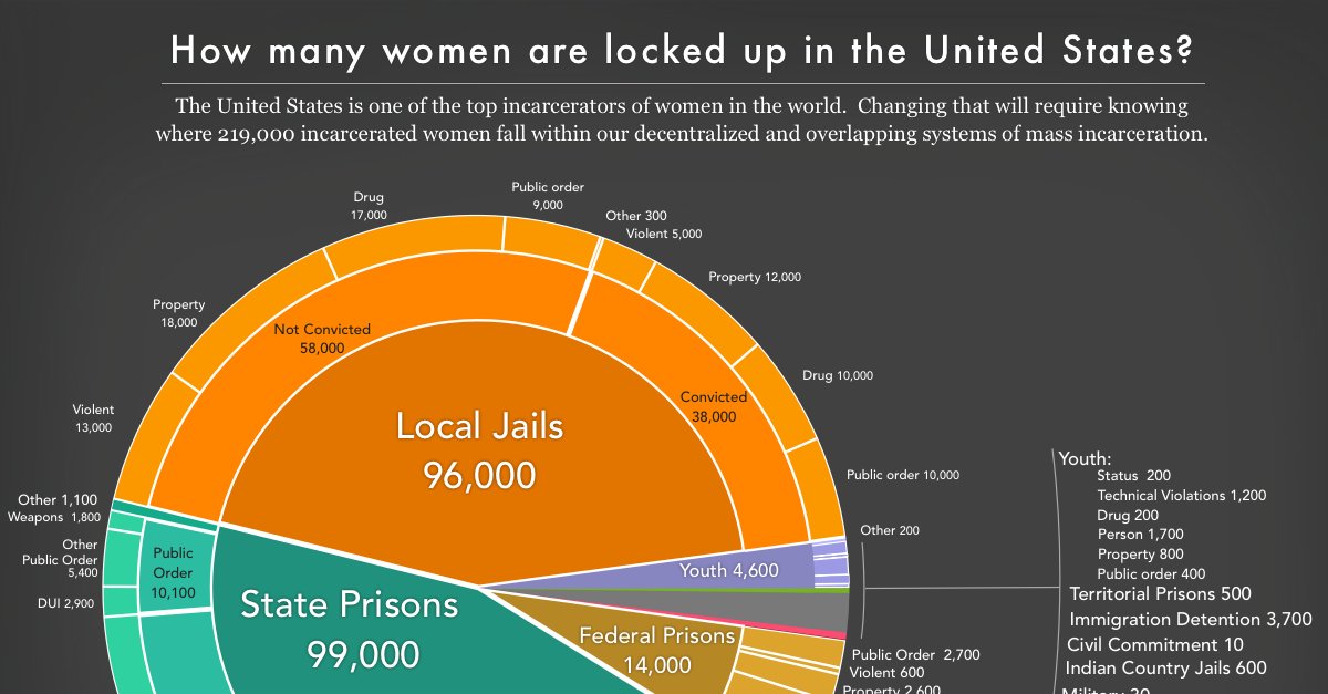 Women's Mass Incarceration: The Whole Pie 2017 | Prison