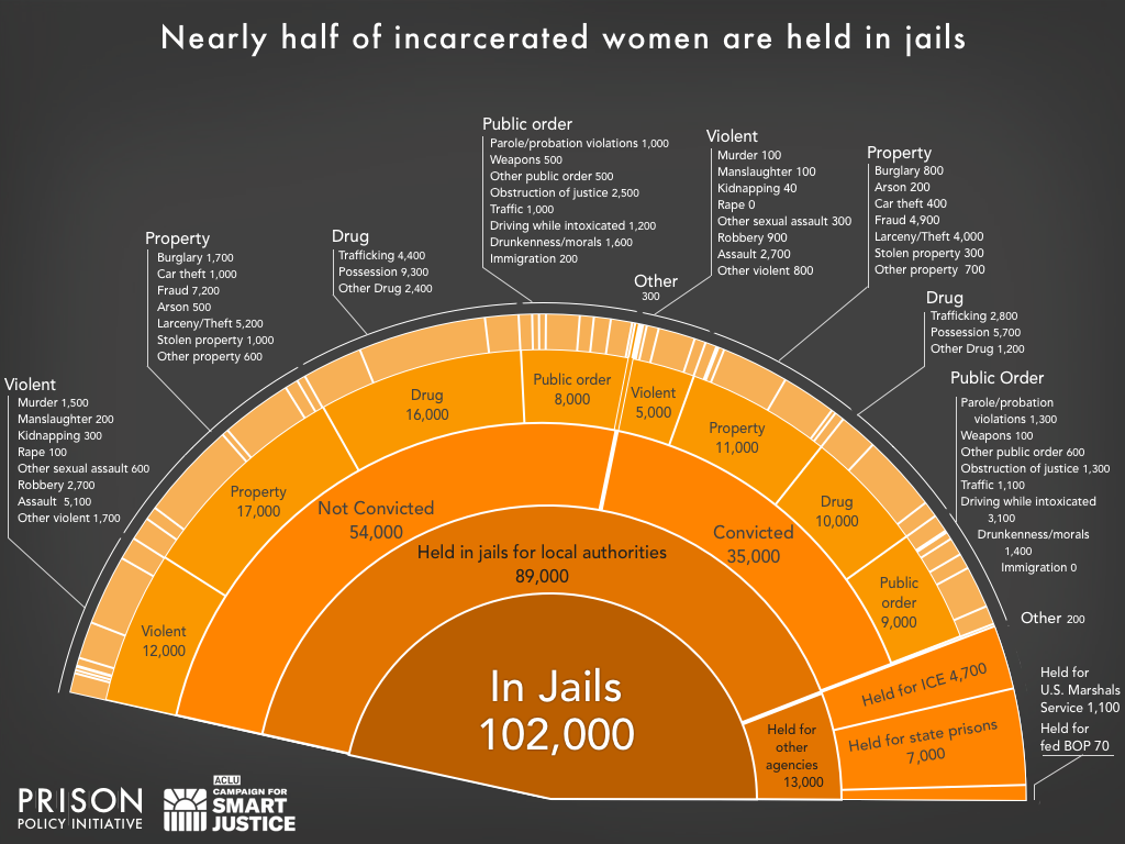 slice of a pie chart showing the number of women locked up in jails on a given day in the United States and the underlying offense using the newest data available in 2018