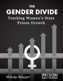 Gender Divide report thumbnail
