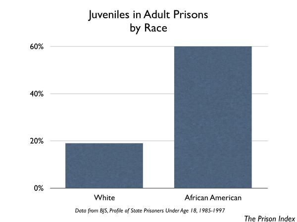 a study on juveniles in adult prisons Young offenders will receive sentences in the adult criminal system which are harsher and more a 1996 texas study found that juveniles sentenced in adult court did receive longer terms than they would the incarceration of waived youth in texas prisons, crime and delinquency, vol.